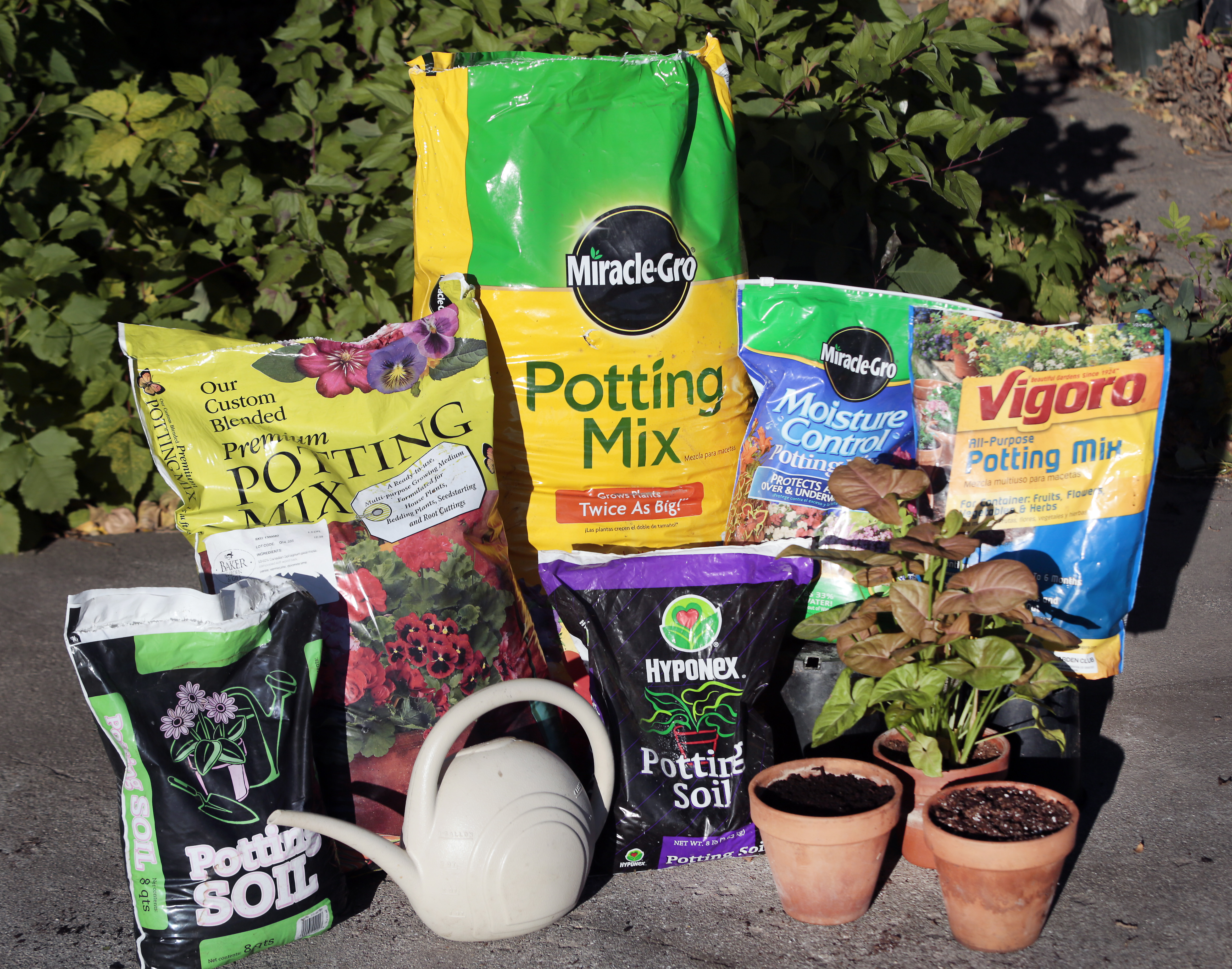 Growing Together with Don Kinzler - WordPress.com & Which Potting Mix is Best? \u2013 Growing Together with Don Kinzler